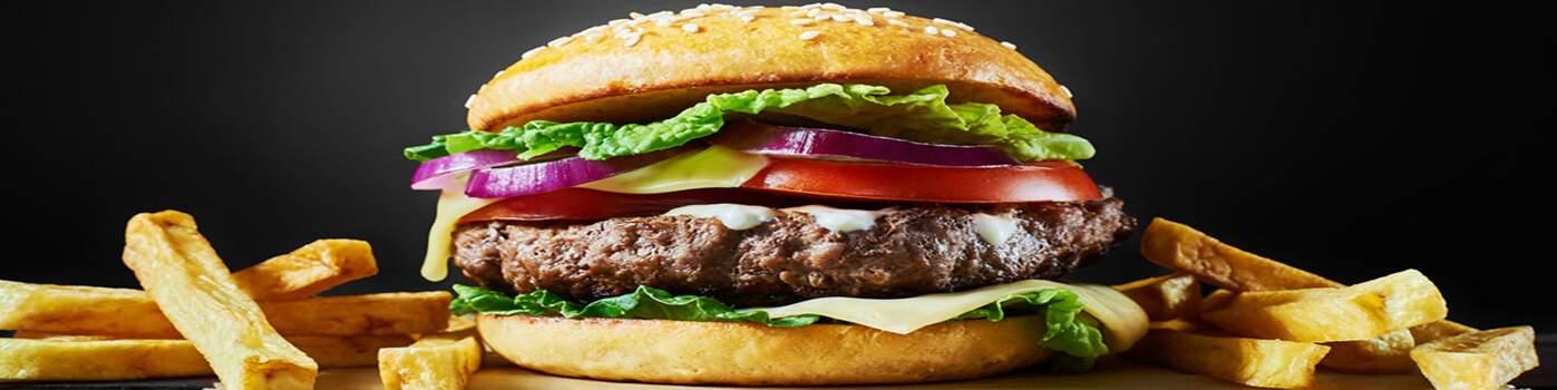 Plaque à hamburger au meilleur prix chez Paques SA