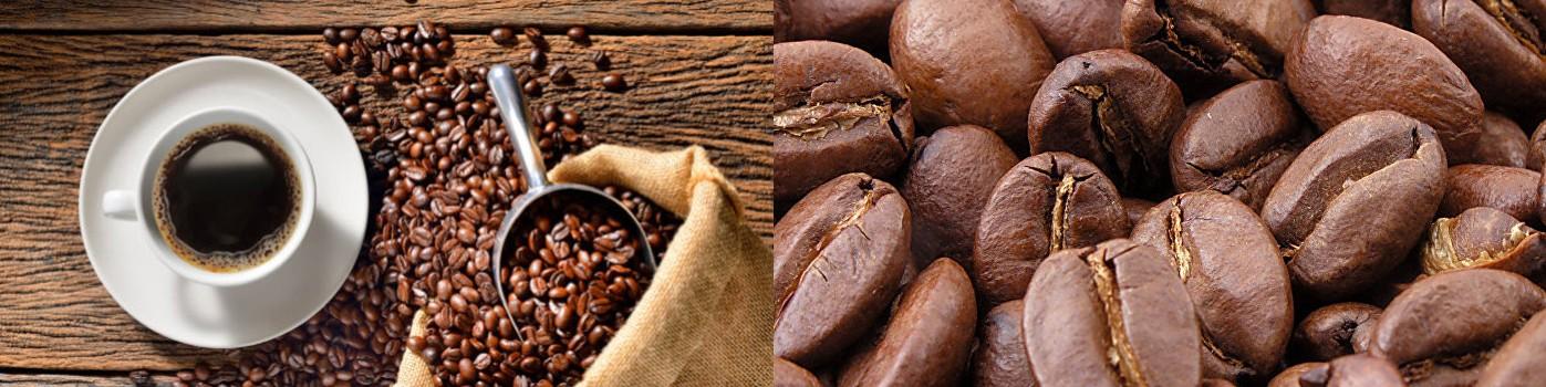 Matériel pour cafés au meilleur prix chez Paques SA