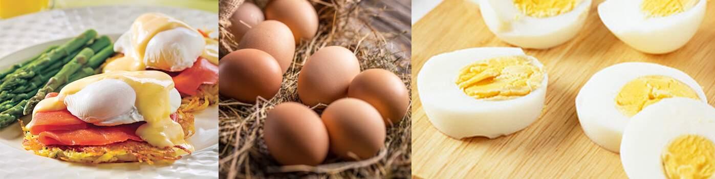 Ustensile de cuisine pour les oeufs au meilleur prix | Materiel-horeca | Achat en ligne